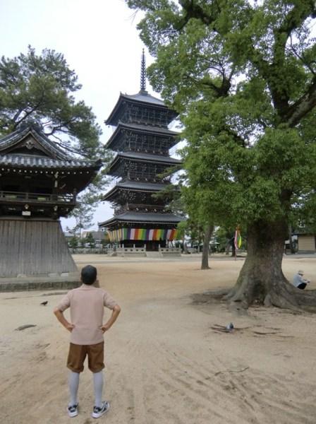 Old man looking at a pagoda in Japan