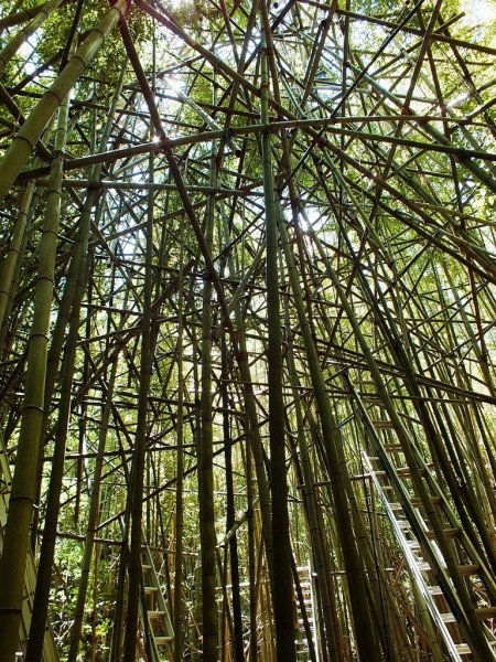 Big Bambu Preview - 4