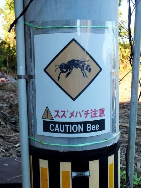 9 - Takamijima - Caution Bee