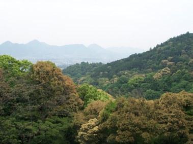 Climbing Konpira-san - Part Four - 06