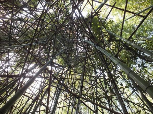 Big Bambu - Teshima - 06