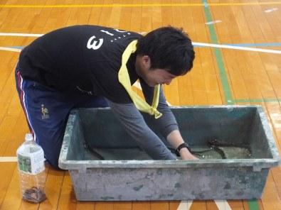 Undokai Ogijima 2015 - 15