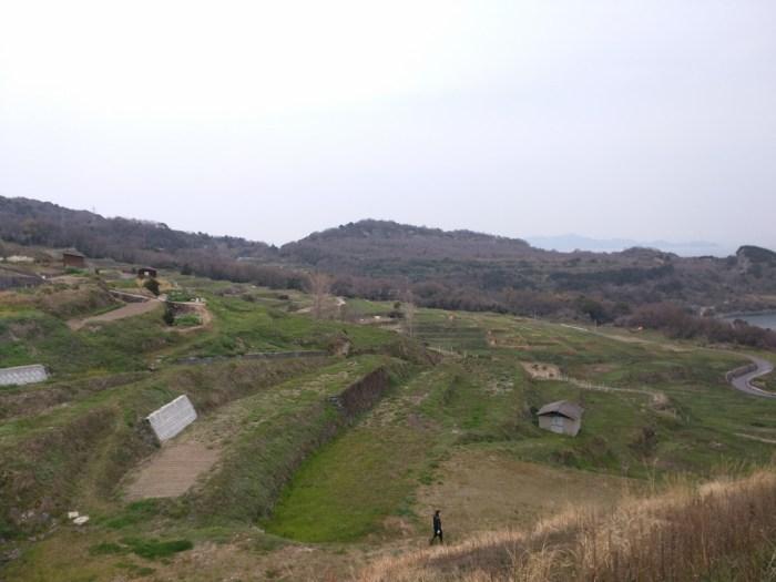 13 - Terraced Rice Fields on Teshima