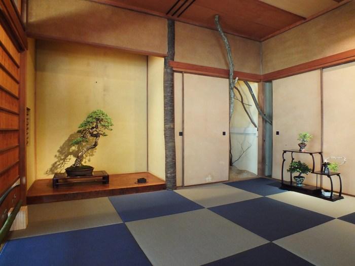 10 - Megijima - Feel Feel Bonsai