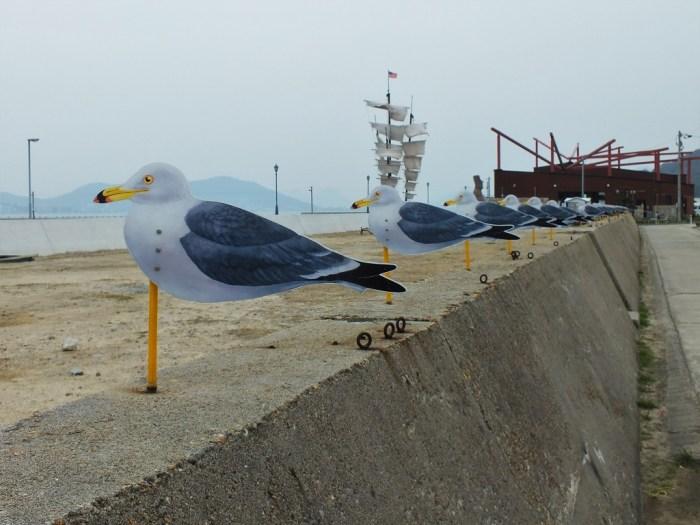 seagull-parking-lot-on-megijima