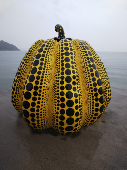 Yellow Pumpkin in the Rain and more - 5