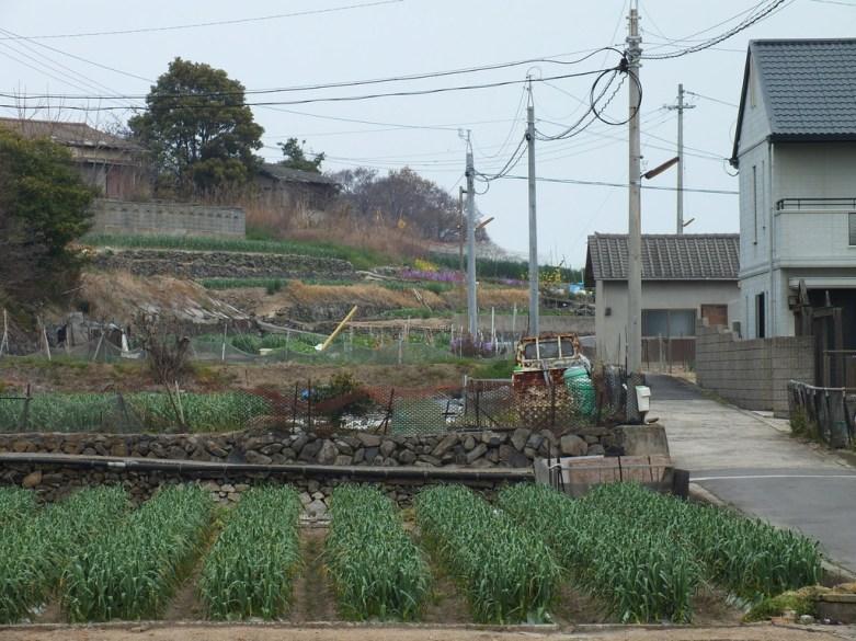 Megijima - Spring 2013 - 22