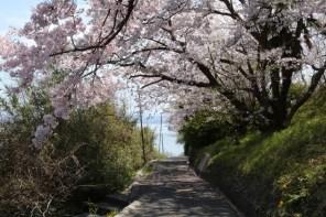 Ogijima - April 9-23 2019 - 23