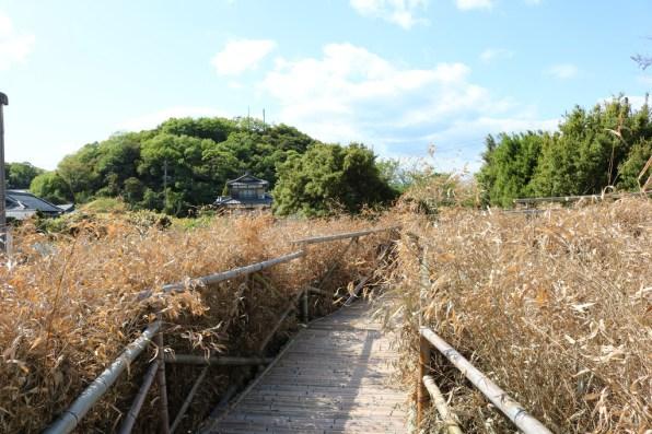 Setouchi Triennale 2019 - Part One - Shodoshima - 40