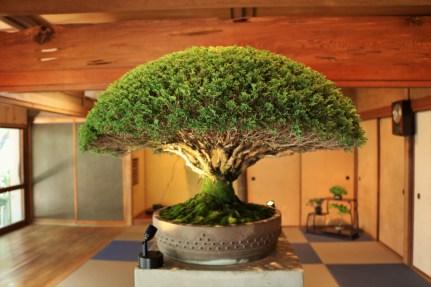 Setouchi Triennale 2019 – Part Seven – Megijima - 39