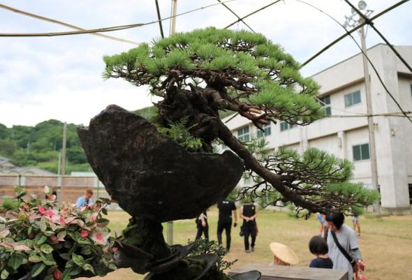 Seppuku Pistols vs Masashi Hirao - Megijima 2019 - 15