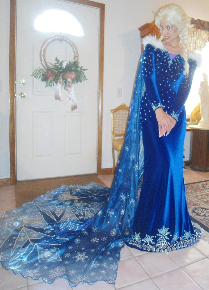 Winter Queen Elsa Costume