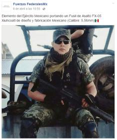 fuerzasfederales4
