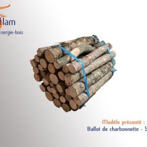 Ballots de Charbonnette 1er choix Pizzéria (essences G1/G2) – 50 cm