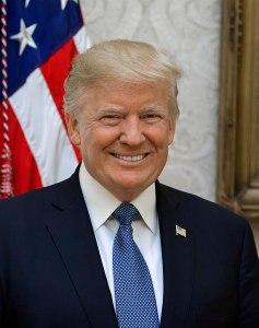 Official Portrait of Donald Trump