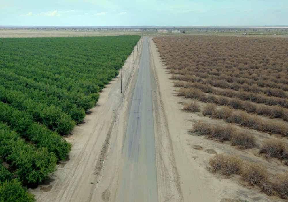Sundance's New Climate Program showcases environmental docs