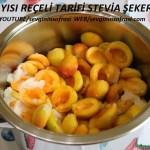 Kayısı Reçeli Stevia Şekerli