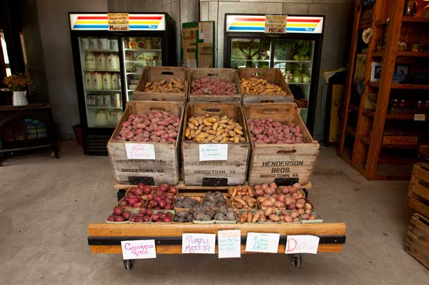Produce and products for sale in a farm store.