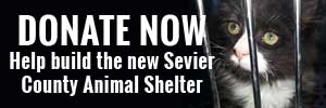 Sevier County Animal Shelter