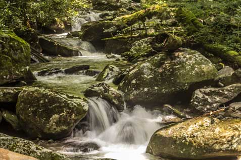 Middle Prong Stream in Great Smoky Mountains National Park
