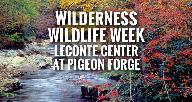 Pigeon Forge Kicking Off Wilderness Wildlife Week