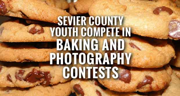 4-H COUNTY BAKING AND PHOTOGRAPHY CONTEST WINNERS