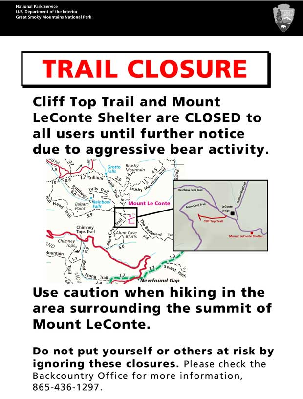 Bear Activity Prompts Closure of Smoky Mountains Trails