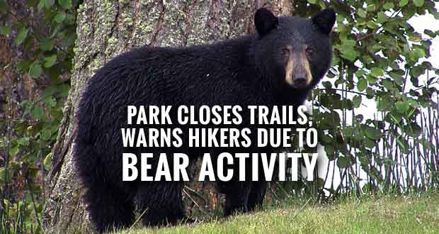 Mt. Le Conte Backcountry Shelter and Cliff Tops Trails Closed Due Bear Activity