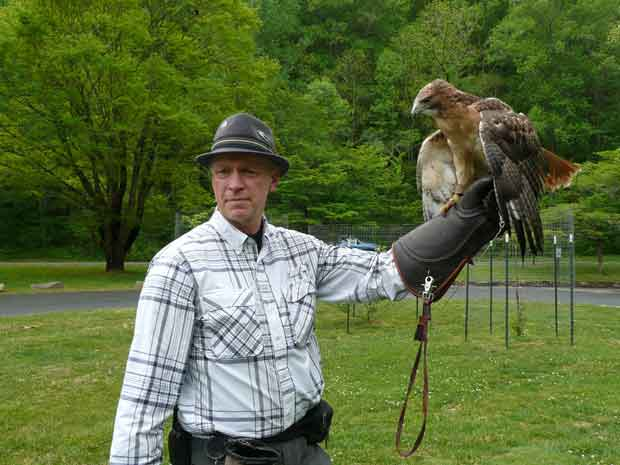 Balsam Mountain Trust Birds of Prey Program