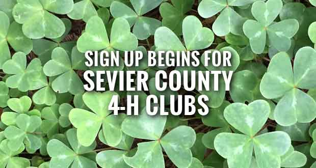 Sevier County 4-H Clubs to Hold Organizational Meetings Soon