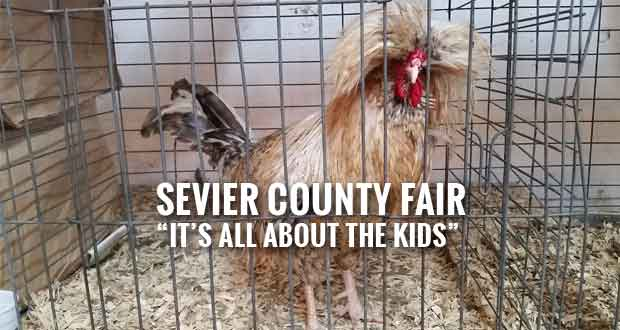 Hundreds of Opportunities for Kids at Sevier County Fair