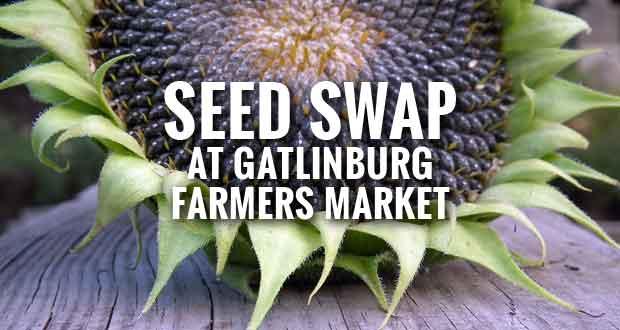 Gatlinburg Farmers Market Hosts Community Seed Swap