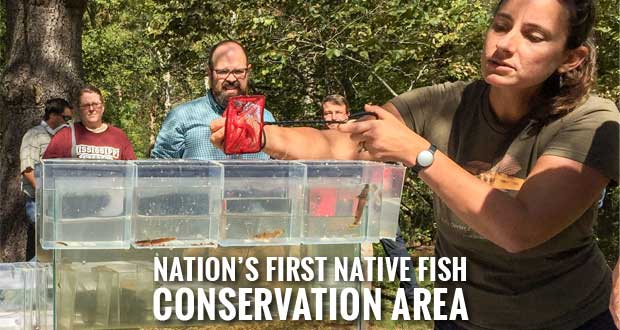 Little Tennessee River Recognized for Native Fish Conservation