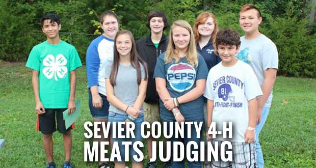 Sevier County 4-H Meats Judging Teams Do Well in Competition