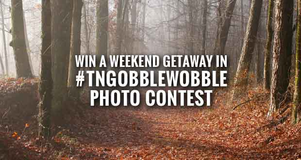 Tennessee State Parks Host Day After Thanksgiving Hikes and Photo Contest