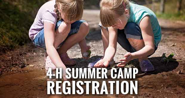 4-H Offers Variety of Summer Camp Opportunities