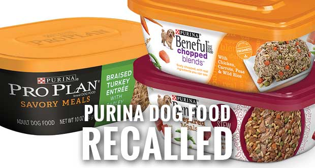 Beneful, Pro Plan Dog Food Recalled by Nestlé Purina
