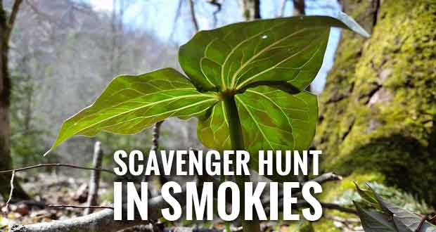 Join in the Great Smoky Mountains Scavenger Hunt