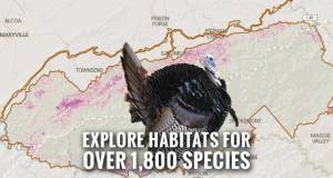 Great Smoky Mountains National Park has released a web application called Species Mapper that lets users explore habitats for over 1,800 species.