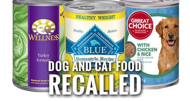 Grreat Choice, Wellness, Blue Buffalo Pet Foods Recalled Due to Metal Pieces