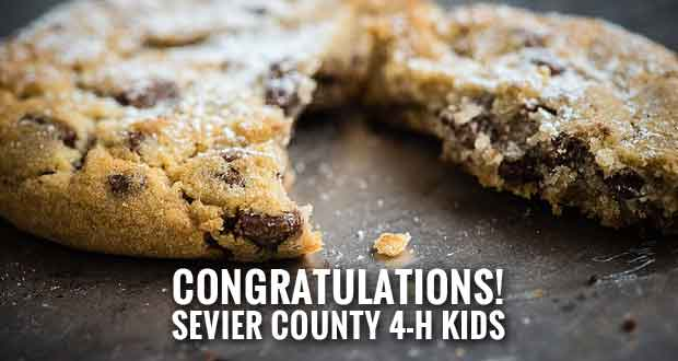Sevier County 4-H Baking And Photography Contest Winners