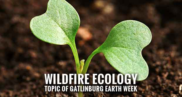 "Gatlinburg Earth Week ""Going Green"" with New Events"
