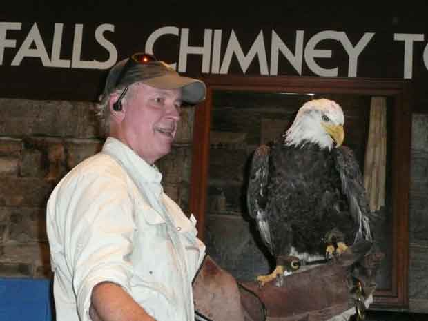 Balsam Mountain Trust to Give Birds of Prey Program at Oconaluftee
