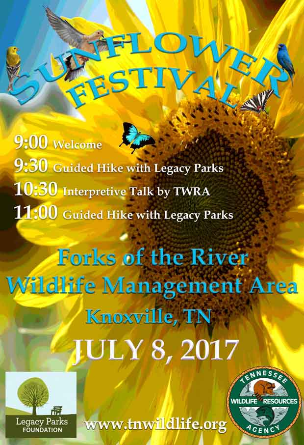 TWRA and Legacy Parks Plan Sunflower Festival at Forks of the River WMA