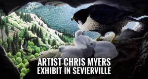 Sevierville Commons Arts Council to Hold Reception for Artist Chris Myers