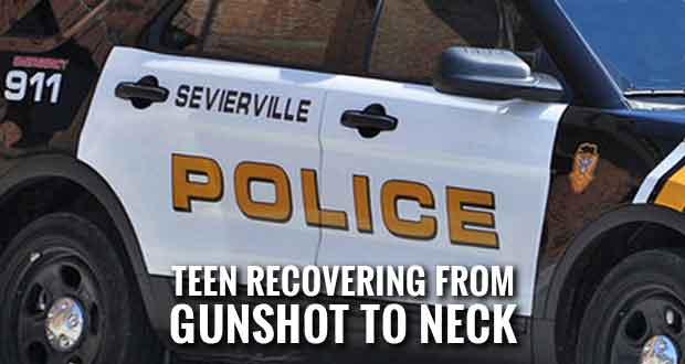 Sevierville Man Accidentally Shoots Teen with AR-15 Rifle