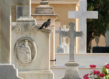 cementerio-sanfernando-gonzalez-alba