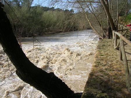 En noviembre del pasado año el río sufrió varios vertidos importantes procedentes de una empresa de Morón/SA.