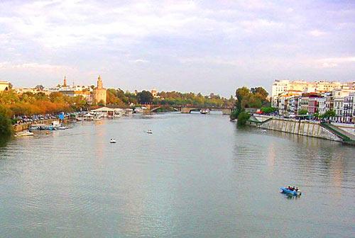 La resistencia del estuario del Guadalquivir es limitada y se ha reducido la diversidad biológica del río. /SA