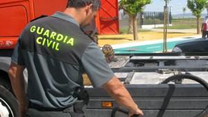 manguera-robo-gasolina-gc-260512